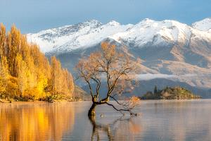 PSA HM Ribbons - Darryl Puah (Malaysia) <br /> Autumn at Lake Wanaka