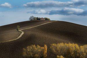 PSA HM Ribbons - Francesco Pelle (Italy)